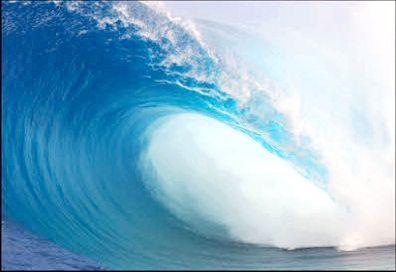 біологічні ресурси світового океану