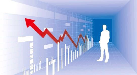 принципи організації бухгалтерського обліку
