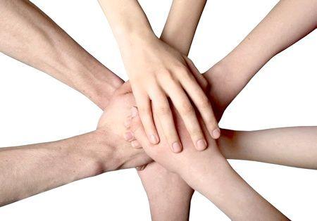соціальна організація
