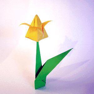 Робимо тюльпан з паперу своїми руками