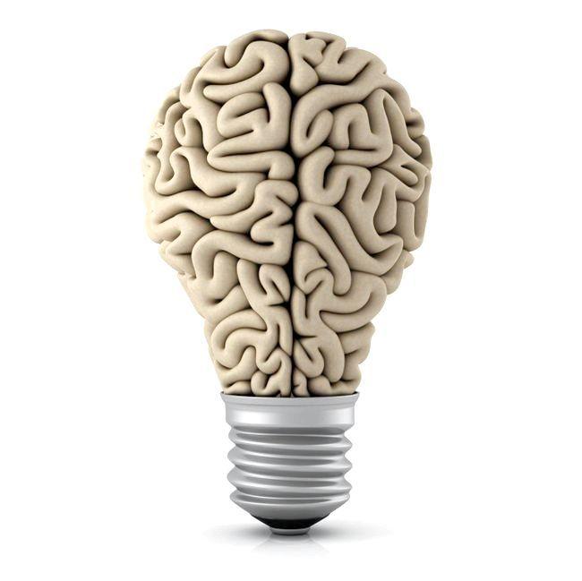 передній мозок