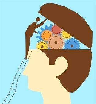 функції переднього мозку