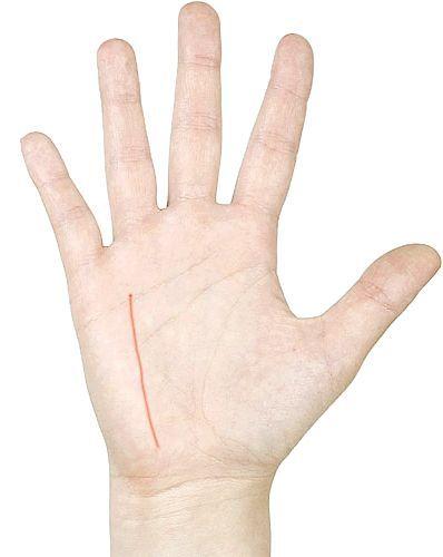 Лінії на руці. Значення.