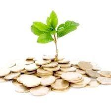 Інвестиції і капітальні вкладення