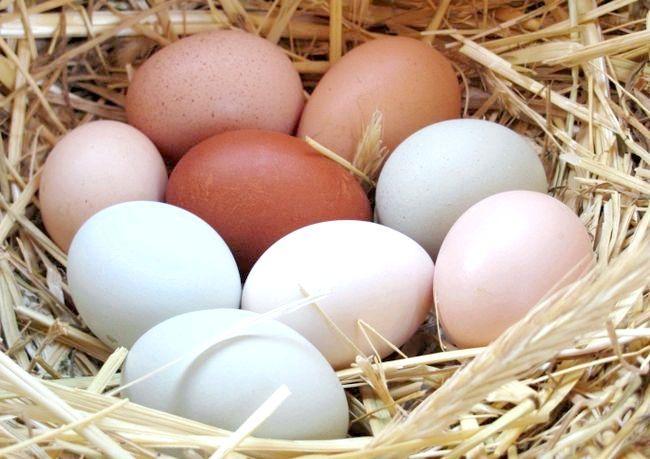 яєчна дієта на 7 днів