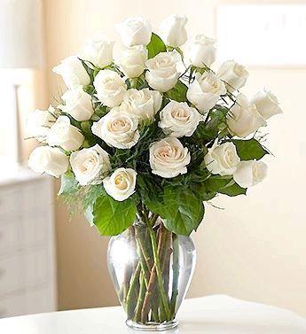 Мова квітів: до чого дарують білі троянди і не тільки