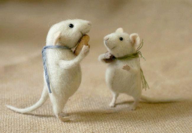 До чого сняться миші: сонник