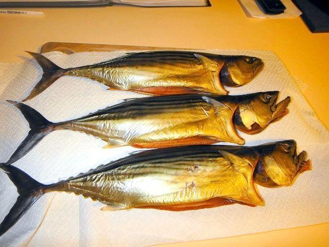 холодне копчення риби в домашніх умовах