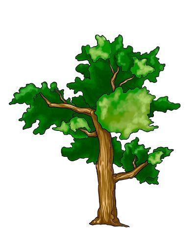 Як намалювати дерево разом з дітьми весело і невимушено