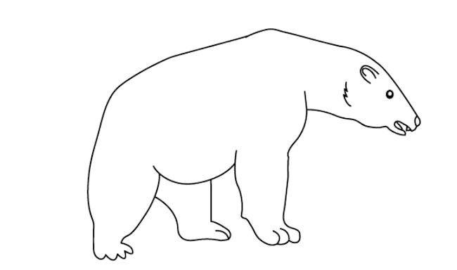 як намалювати ведмедика олівцем