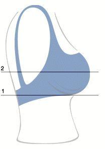 як визначити розмір бюстгальтера