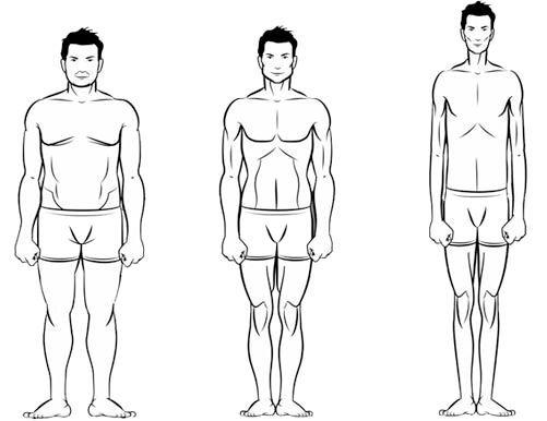 типи чоловічих фігур
