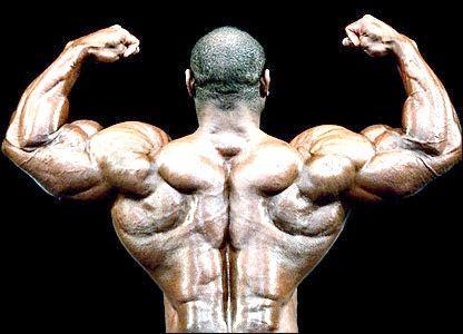 Як зміцнити м'язи спини, грудей і рук