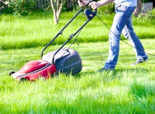 як вибрати газонокосарку електричну