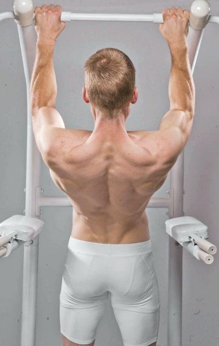 які м'язи працюють при підтягуванні