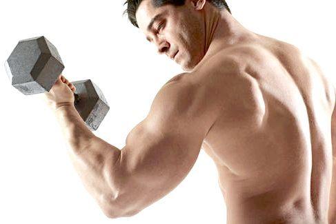 Які вправи для рук найбільш ефективні