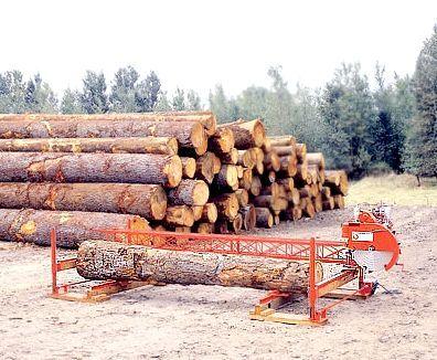географія лісової промисловості