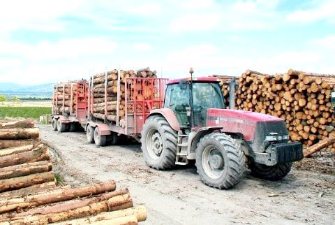 райони лісової промисловості