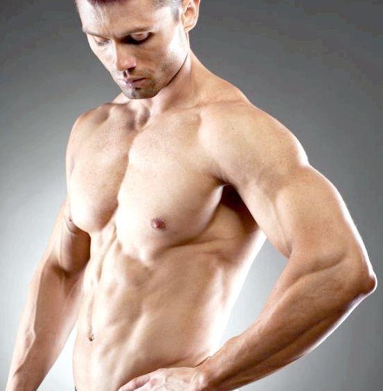 м'язи плечового пояса верхньої кінцівки