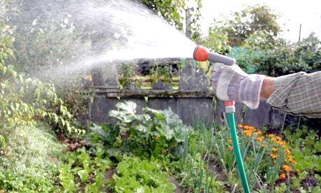 Садовий насос для поливу