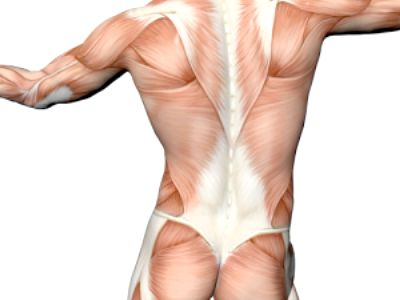 Посмикування м'язів