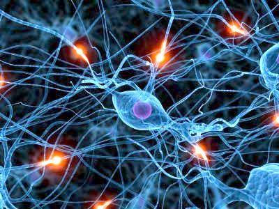 особливості нервової тканини