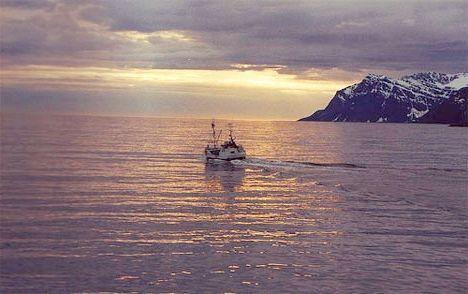Океани світу: сучасний стан