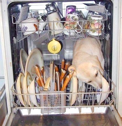 вбудована посудомийка