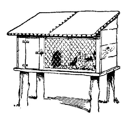 розміри кліток для кроликів креслення