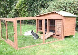 розміри кліток для відгодівлі кроликів