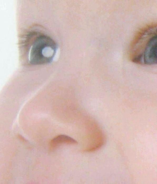 органи чуття нюх людини