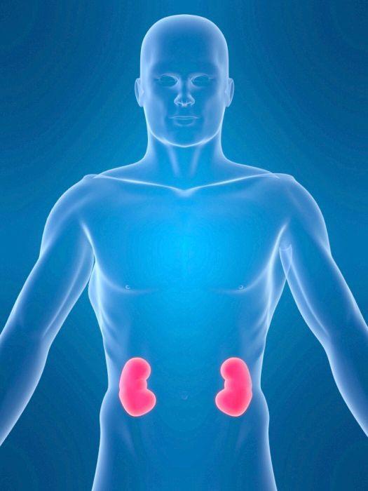 хвороба нирок пієлонефрит