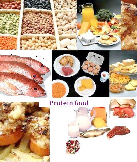 білкова їжа для схуднення список