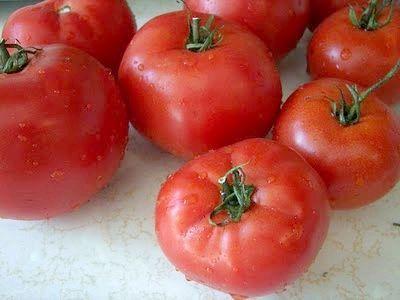 Сорт помідор Санька