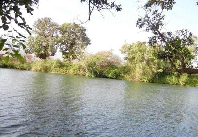 притоки річки Оки