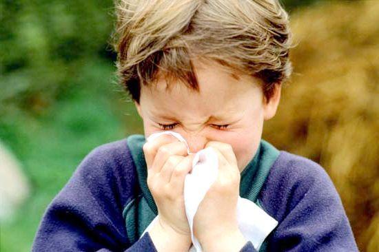 риніт у дитини симптоми