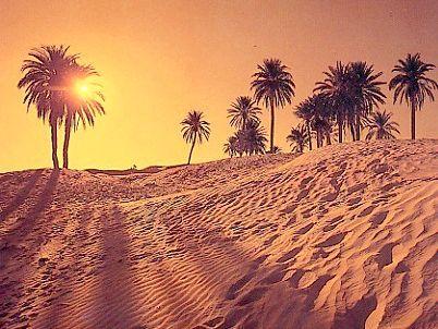 де пустеля цукру