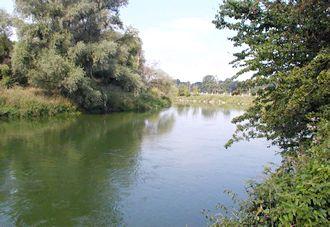 Скільки приток у Дунаю - давайте порахуємо!