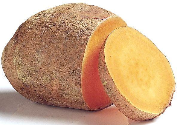 солодка картопля
