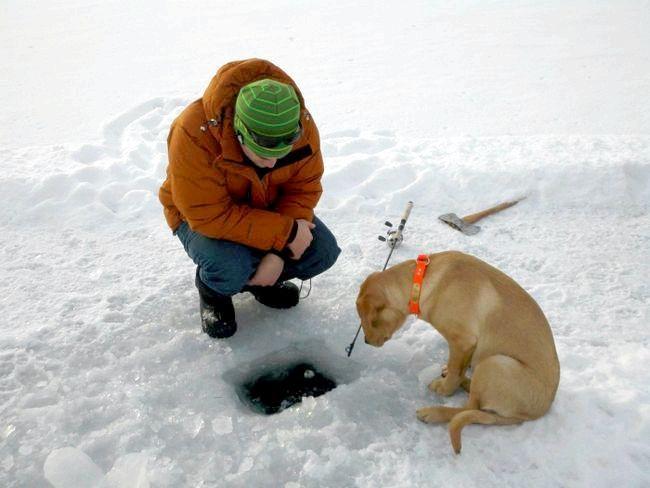 снасті для зимової риболовлі