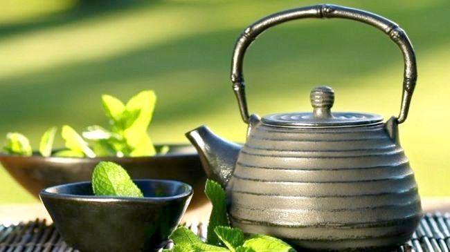 трави для схуднення рецепти