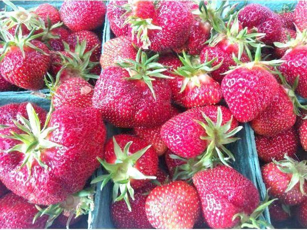 ягода вікторія
